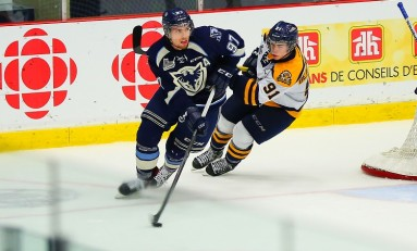 Potential Offensive Defensemen in the 2016 NHL Draft