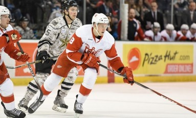 The Grind Line: Prospects the Detroit Red Wings Should Play Now