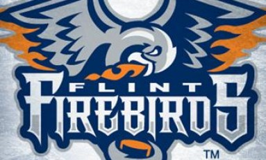 OHL Suspends Flint Firebirds Owner From Hockey Operations