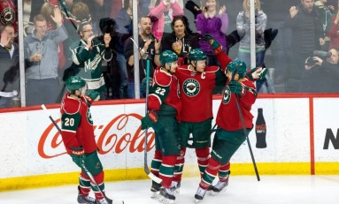 The Minnesota Wild Franchise Four