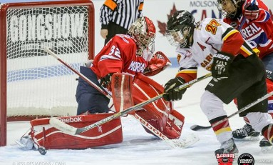 National Women's Hockey League Welcomes International Players