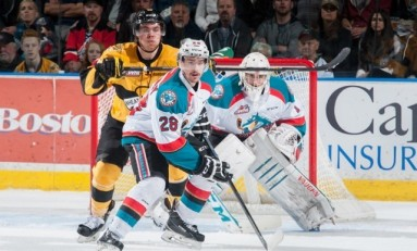 New WHL Champion Will be Crowned in 2016