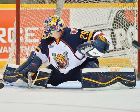 Mackenzie Blackwood Barrie Colts