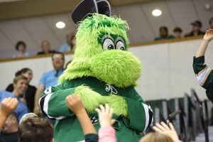 (Photo credit: Michael Connell/Texas Stars Hockey)