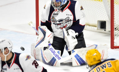 Spitfires Split Opening Pair Against Sting