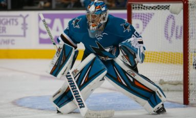 Recap: Sharks & Dell Blank Flyers