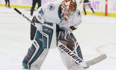 Sharks Goalie Depth Needs Attention