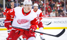 Kraken Could Target These Red Wings in the Expansion Draft