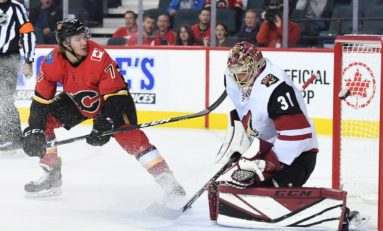 Coyotes Turn to Hill to Solve Goaltending Issues