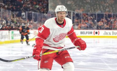 Red Wings Need Biega to Make an Impact This Season