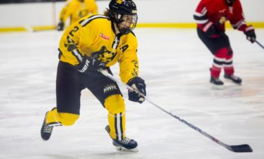 NWHL All-Stars Headed to Nashville in 2019
