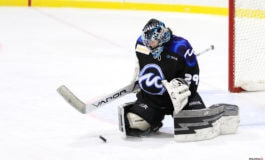 Emptying the NWHL Notebook: the Lost Leveille & Selander Tapes