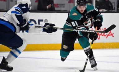 Anaheim Ducks Rookie Faceoff Standouts