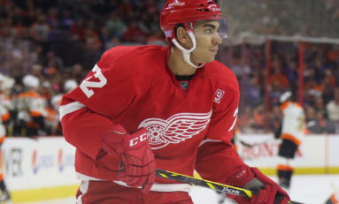 Red Wings Offseason Wish List