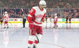 Red Wings Only Have a Few Trade Chips