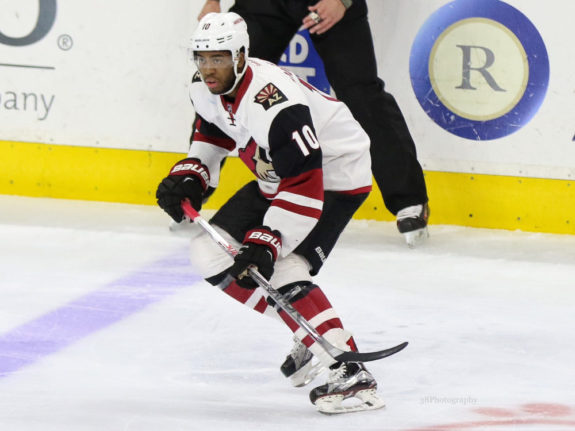 Anthony Duclair (Amy Irvin, The Hockey Writers)