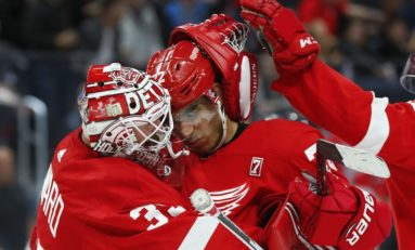 The Grind Line: Red Wings' Offseason Wish List