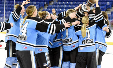 Buffalo Beauts Promote Community Just By Being Themselves