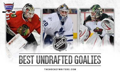 Top 10 Best Undrafted NHL Goalies