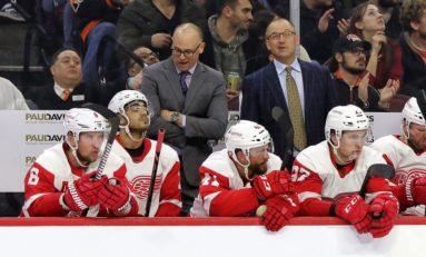 Red Wings' Defense Needs Islanders' Treatment