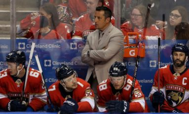 Sharks' Interim Bench Boss Boughner Brings Experience
