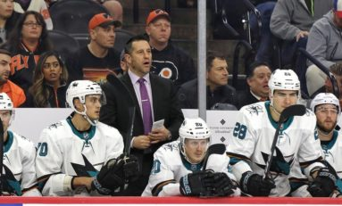 Sharks & Barracuda Coaching Staffs Named