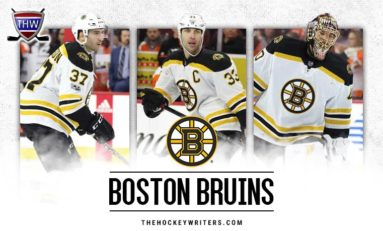 Bruins Offseason Not a Failure