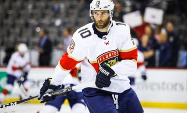 The Forgotten Florida Panther: Brett Connolly
