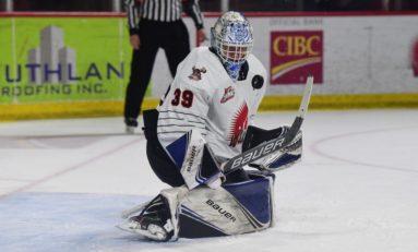Brock Gould - 2020 NHL Draft Prospect Profile