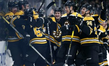 Bruins' 2018-19 Regular Season Report Card