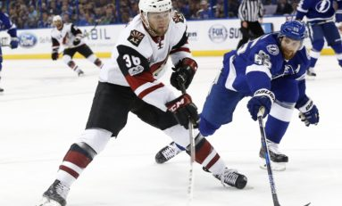 Monday Morning Howl: Coyotes End 2017 on Sour Note