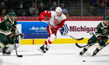 The Grind Line: Red Wings' Trade Worthy Prospects