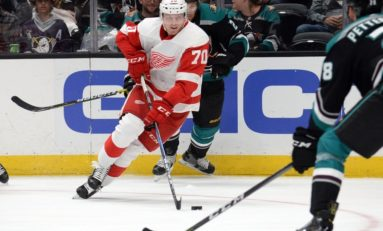 Red Wings Prospect Rankings: Top Risers & Fallers
