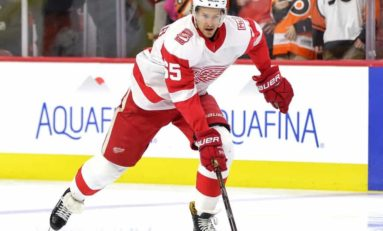 Red Wings Facing Significant Logjam on Defense