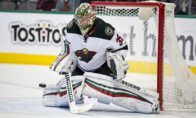 No Backup: Analyzing the Wild's Goaltending Situation