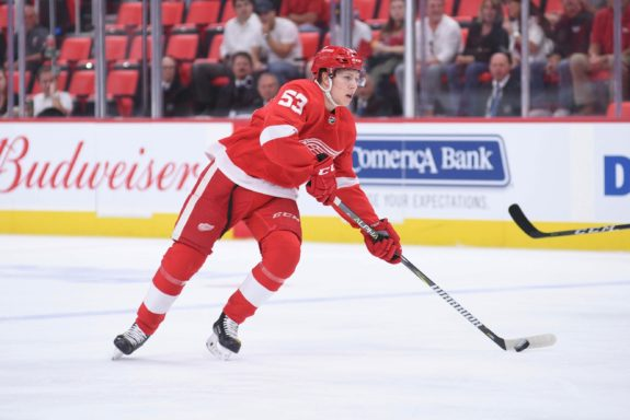 Detroit Red Wings defenseman Dennis Cholowski