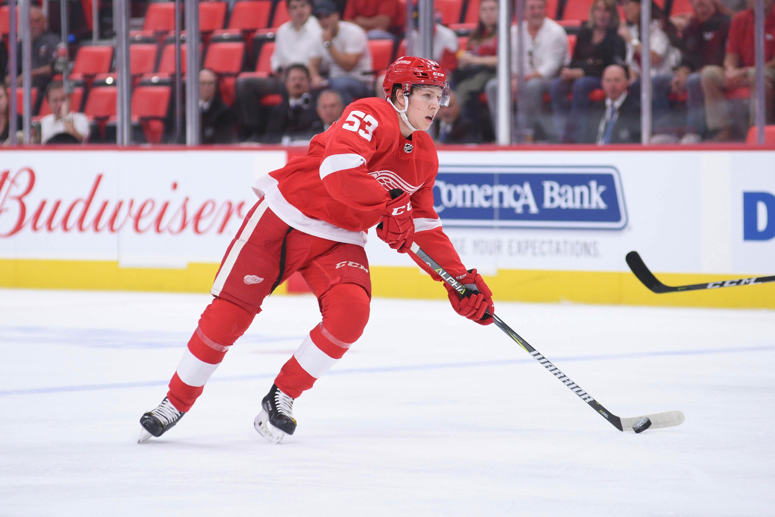 d3440979b The Grind Line: Detroit Red Wings Rebuild & Prospects