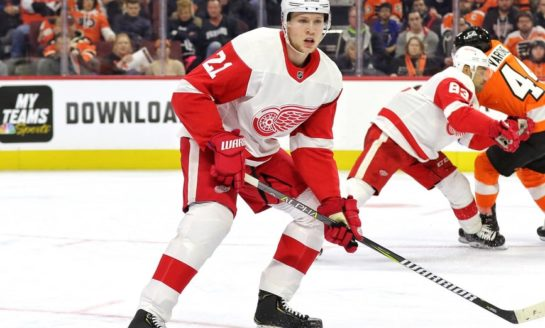 Red Wings Need to Run With 7 Defensemen This Season