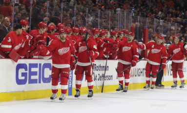 Before the Red Wings Playoff Streak Began