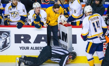 Linesman Don Henderson's Career Could Be Over: Report