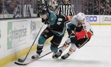 Ducks' Rookies Douse Playoff-Bound Flames