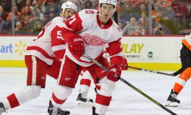 Grading the Red Wings Offseason Moves