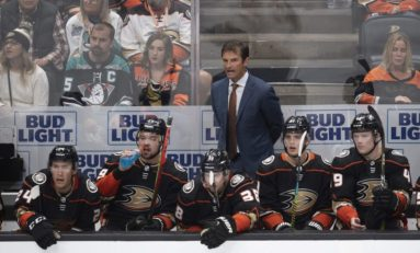 Ducks Injuries, Inexperience Part of Nose Dive