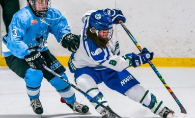 Beauts Add Perennial Sniper in Babstock