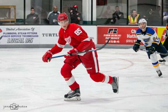 Detroit Red Wings Elmer Soderblom