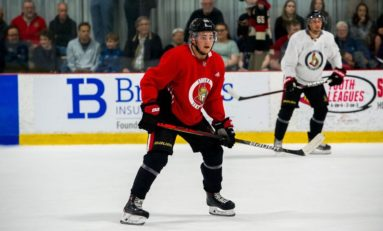 Senators' Loaned Prospects Doing Well in Europe