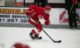 Red Wings' Training Camp Highlighted By Newcomers and Misfortune