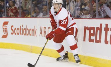 Red Wings Best Options If Athanasiou Leaves