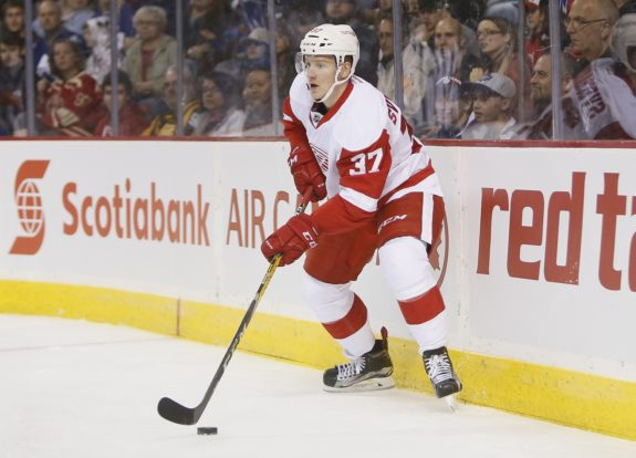 Evgeny Svechnikov, Detroit Red Wings