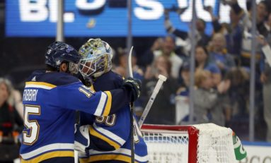 A  Stars' Fan Guide to the St. Louis Blues